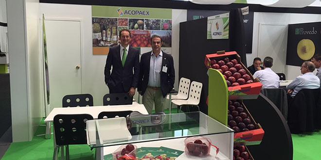Fruit Logística 2016 Acopaex