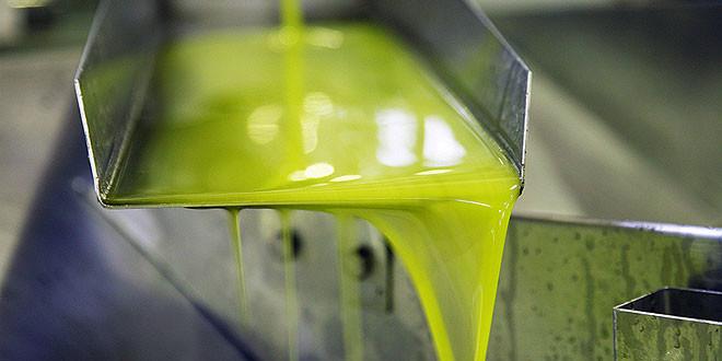 aceite-de-oliva-extremadura