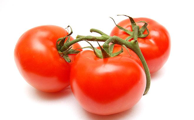 tomate-apis-acopaex