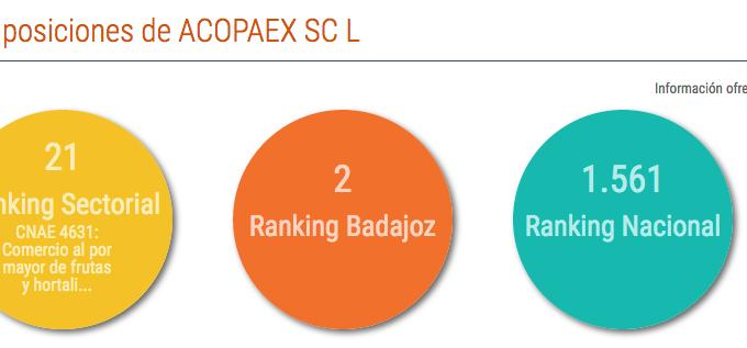 Acopaex