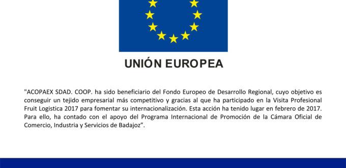 Microsoft Word - Publicidad FEDER web beneficiario_Acopaex.docx