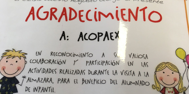 171130_Acopaex_1